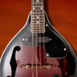 mandolin-str